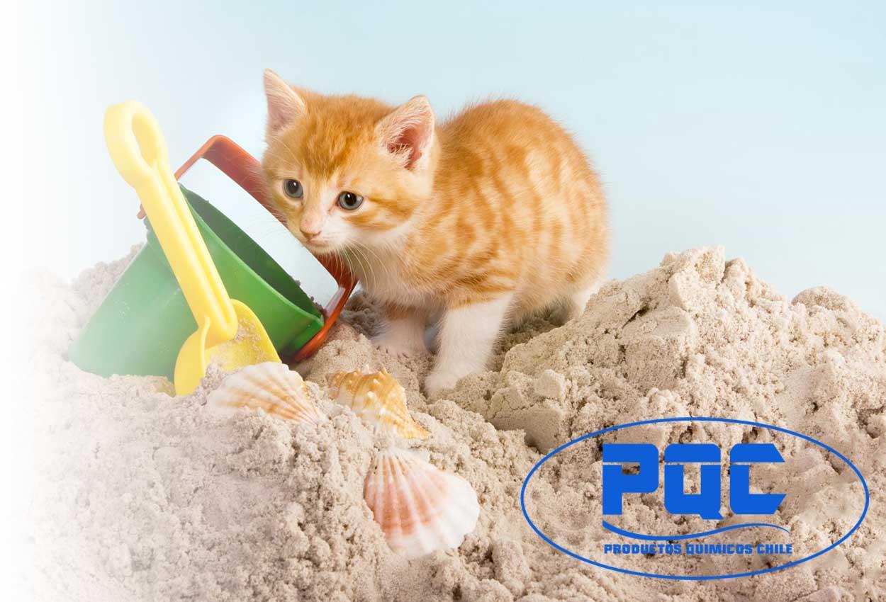 Arena para gatos ¿Cómo se hace?