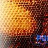 panal cera de abejas