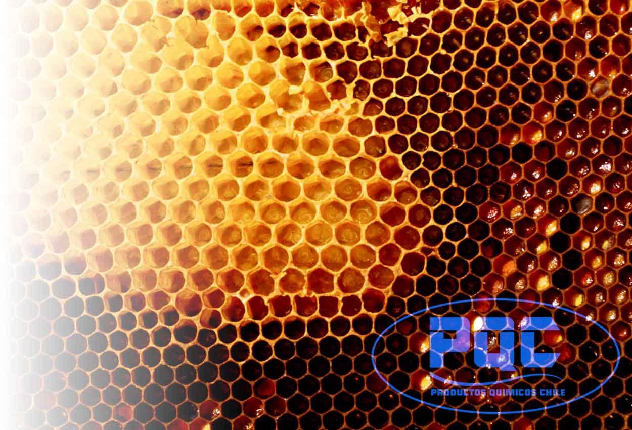 La cera de abejas, un producto natural con múltiples beneficios